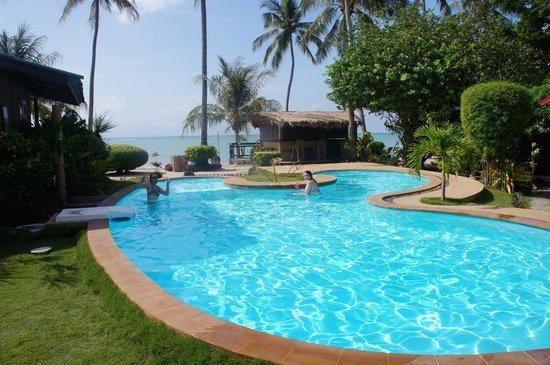 Phangan Beach Resort : The pool