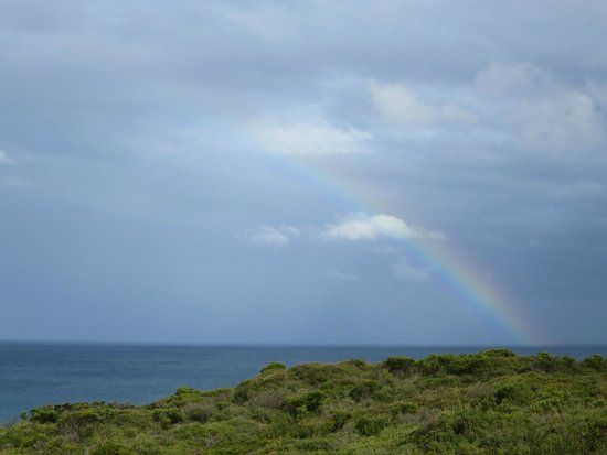 Southern Ocean Lodge : Watching a rainbow from our room