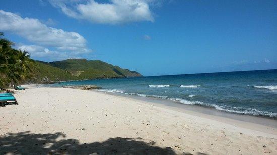 Renaissance St. Croix Carambola Beach Resort & Spa: The beach