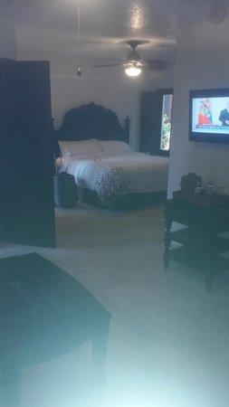 Renaissance St. Croix Carambola Beach Resort & Spa: Island view room