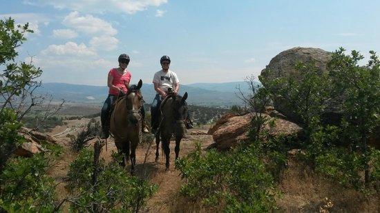 KB Horses : KB Horse back riding