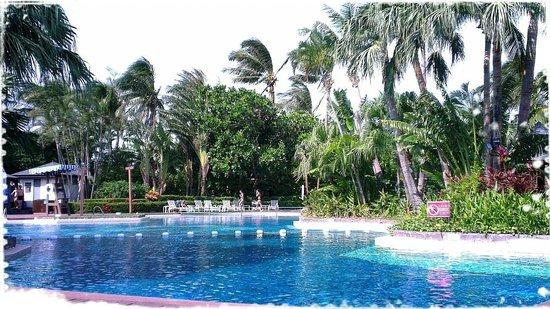 Caesar Park Hotel Kenting : 泳池畔