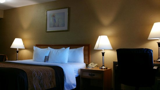 Comfort Inn Moreno Valley near March Air Reserve Base: Firm and soft pillows