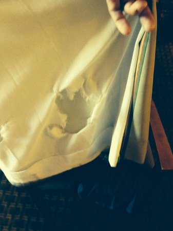 Quality Inn On the Strip: torn curtain