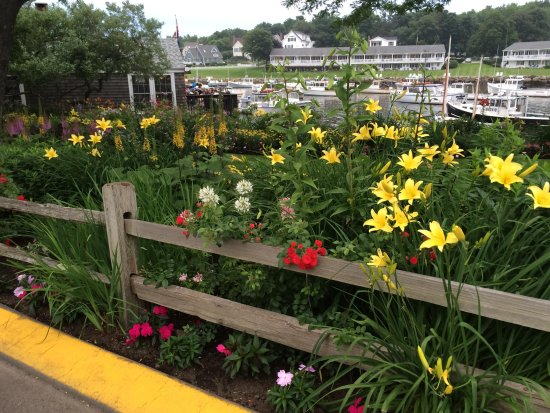 The Beachmere Inn : Walking distance to Perkins Cove!