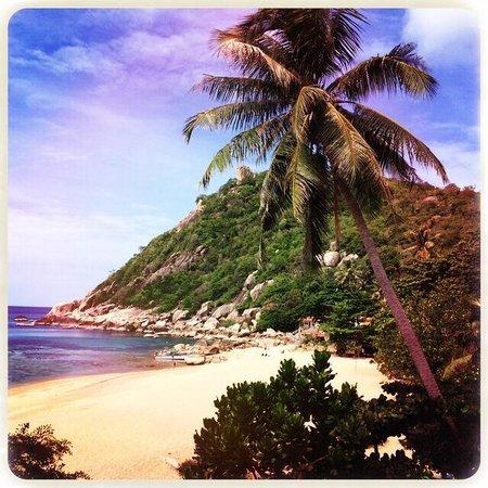 Montalay Beach Resort: Tanote baie