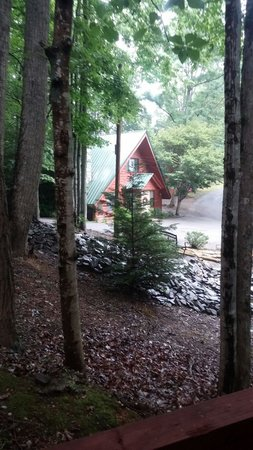 Honeymoon Hills Cabin Rentals: View from cabin