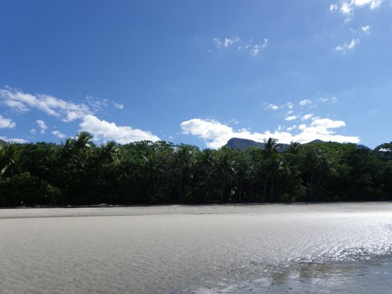 Cape Trib Camping : Beautiful beach