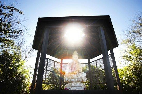 Cable Beach Club Resort & Spa: Buddha Santuary with regular yoga classes