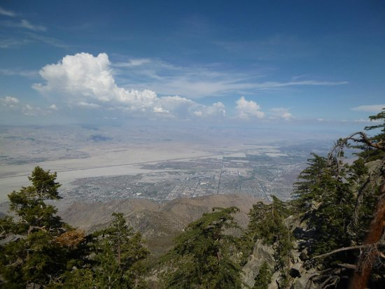 Palm Springs Aerial Tramway: amazing view from the top