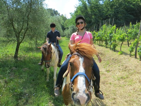 Lucca Horseriding : From the trail
