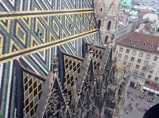 Cathédrale Saint-Étienne (Stephansdom) : Looking Down