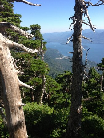 Deer Mountain Trail: 1/2 lookout points