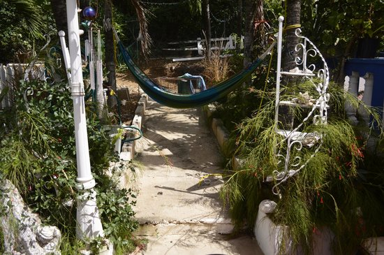 Culebra International Hostel: hostel