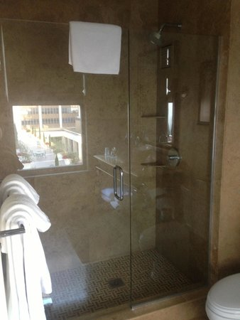 THE US GRANT, a Luxury Collection Hotel, San Diego : Douche et wc