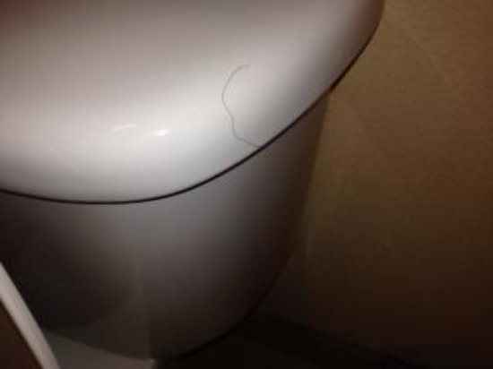Quality Inn And Suites: Yucky toilet