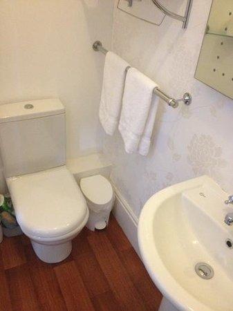 Bryn Aethwy B & B: toilet
