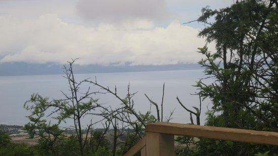 Skyline Eco-Adventures Zipline Tours : View from line 2