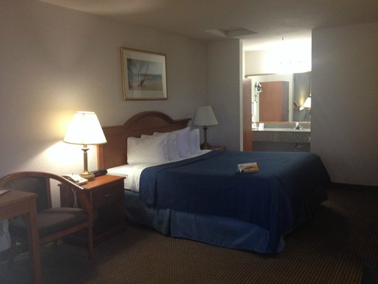 Quality Inn & Suites Redwood Coast: the room(king size bed)