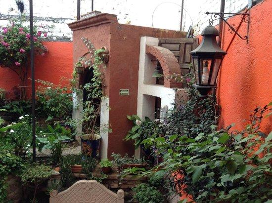 La Casa Azul: Detalle de jardin
