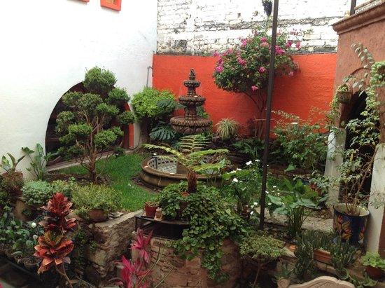 La Casa Azul: Jardin