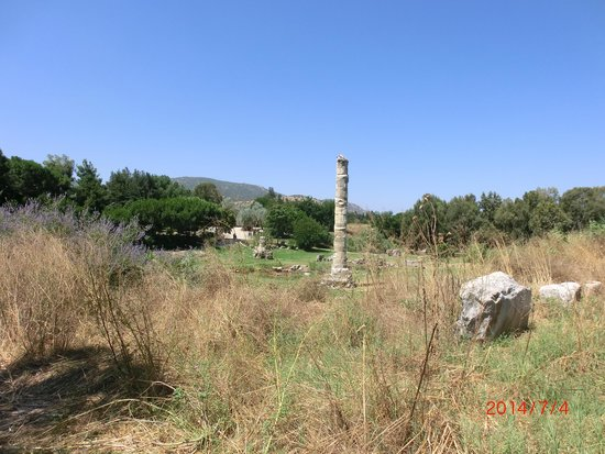 The Temple of Artemis : Another one from the far side