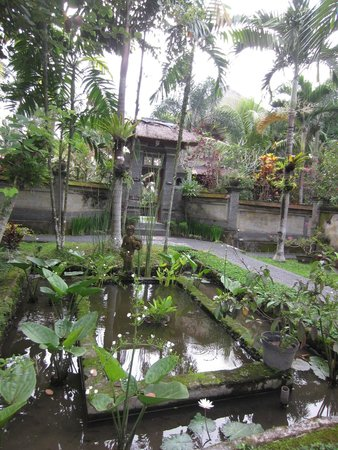 Alam Shanti: hotel grounds