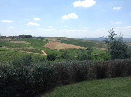 Agriturismo Borgo Vigna Vecchia: a view from the pool