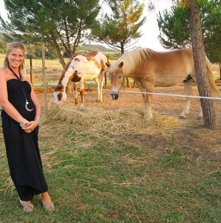 La Casa di Campagna: Horses