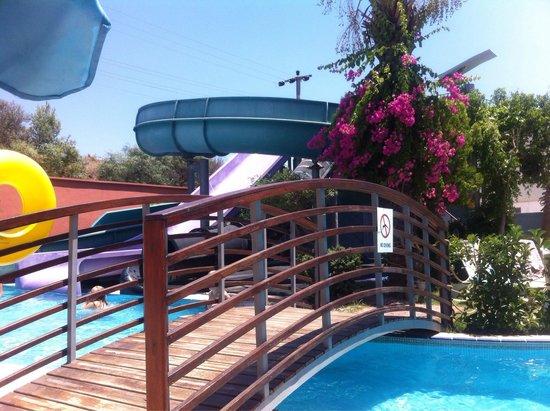 Cosmopolitan Resort Hotel: Pool & Slides ��