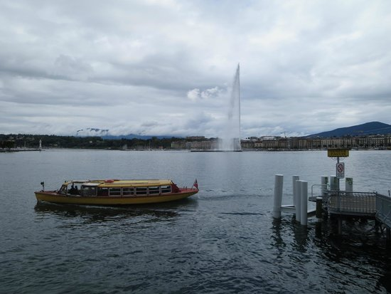 Jet d'Eau: Water spout from afar
