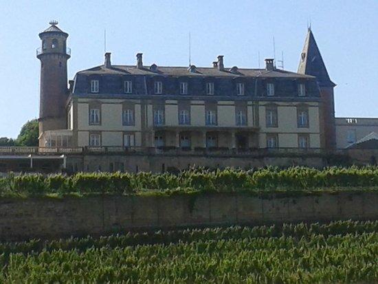 Chateau d'Isenbourg: Vue du château depuis Rouffach
