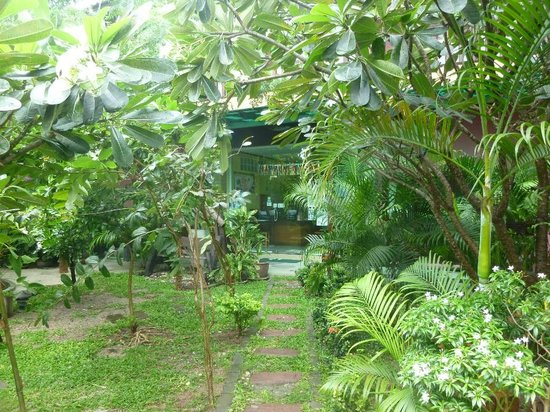 Phatchara Guest House: Lovely gardens leading to reception