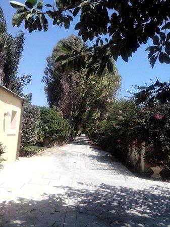 Hotel Caiammari: Entrance