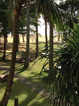Hotel Mermaid & Club: Hotel grounds