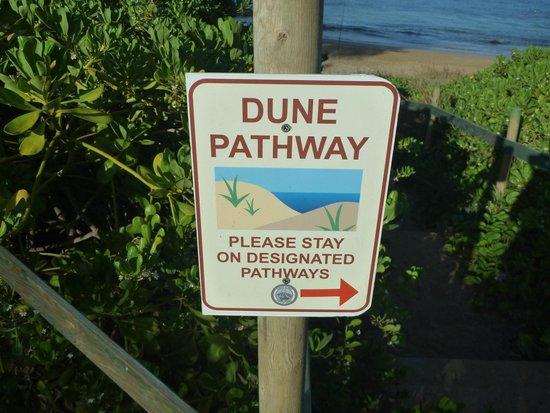 Kamaole Beach Park 3 : 看板