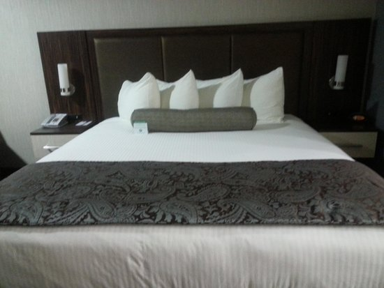 BEST WESTERN University Inn Santa Clara: comfortable bed