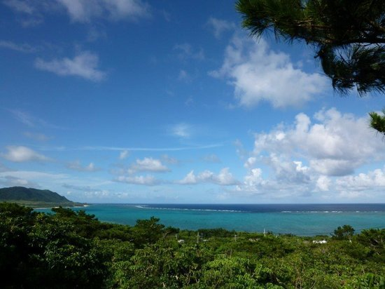 Sea Forest : デッキから見た海。
