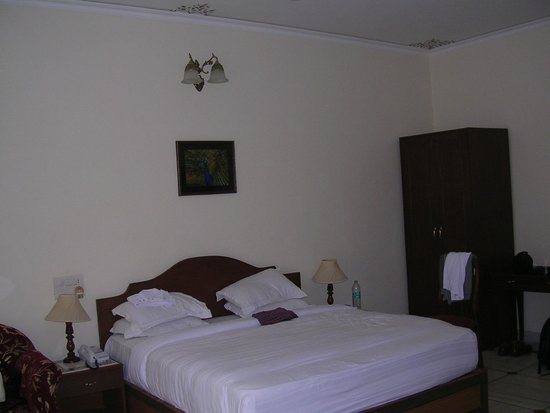 Hotel Surya Vilas Palace: Our  room