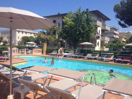 Hotel Albatros: superbe piscine