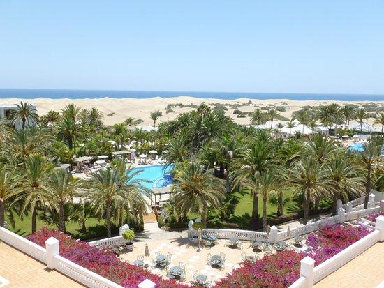 Hotel Riu Palace Maspalomas: Palm trees and pools