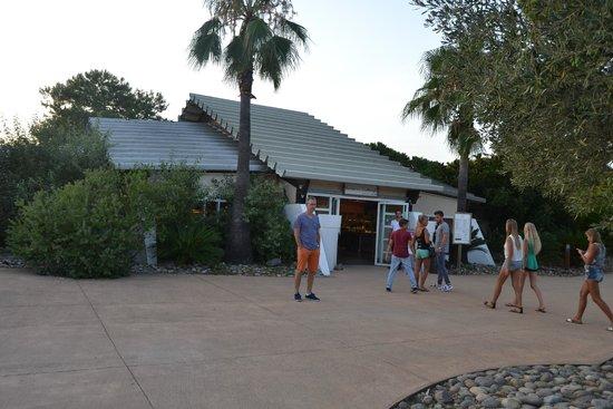 Belambra Clubs - Pineto : restaurant
