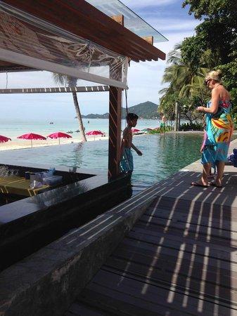 Synergy Samui Resort : pool