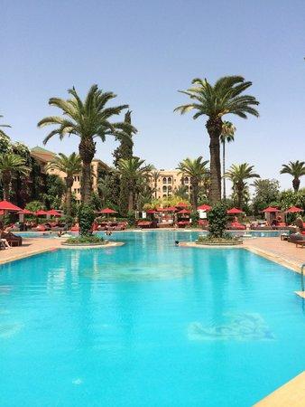 Sofitel Marrakech Palais Imperial : pool lounge sofitel