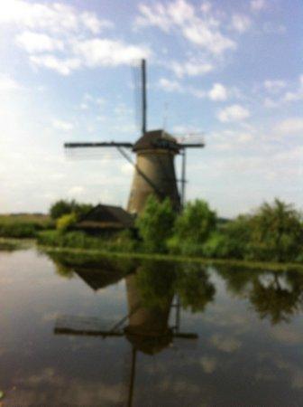 Red de molinos de Kinderdijk-Elshout: vue