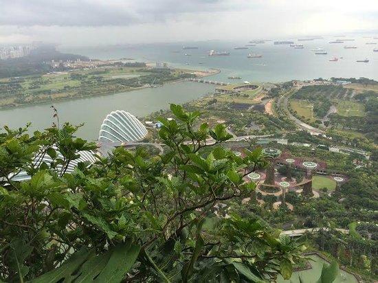 Marina Bay Sands: skypark view