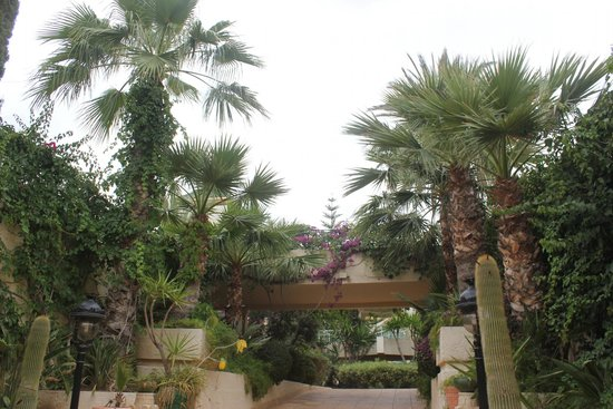 Nahrawess Hotel : дорога к морю