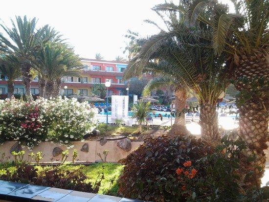 SBH Costa Calma Beach Resort: vue depuis la chambre