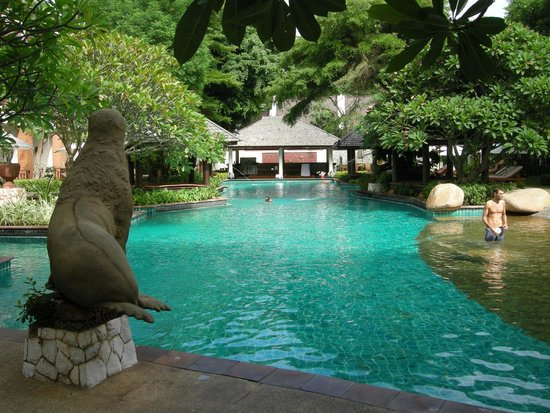 Woodlands Hotel & Resort : pool