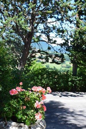 Colle Ridente Borgo Storico: giardino villa